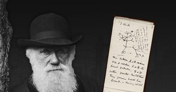 Portrait de Charles Darwin et cahier B de Charles Darwin. Photographie : © Cambridge University Library (DAR 121).