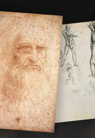 Que révèlent les microbes découverts sur les dessins de Léonard de Vinci ?