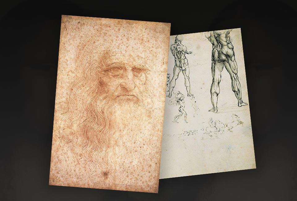 Dessins de Léonard de Vinci : Autoritratto & Nudi per la battaglia di Anghiari, Bibliothèque royale de Turin.