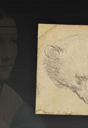 Un dessin de Léonard de Vinci bientôt en vente pourrait atteindre les 14 millions d'euros