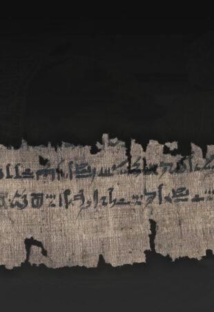 Un manuel égyptien antique révèle de nouveaux détails sur la momification