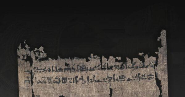 Un fragment du papyrus Carlsberg. © Université de Copenhague.